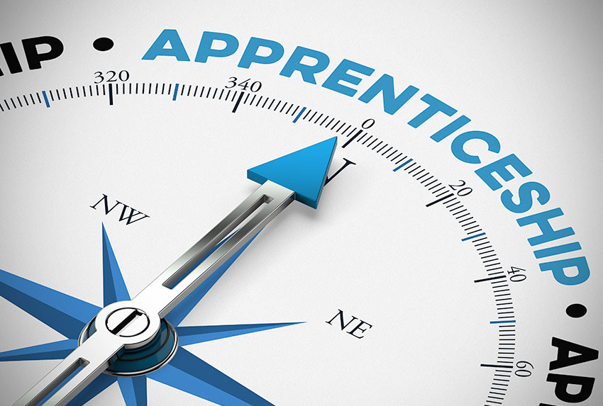 apprentice-feat
